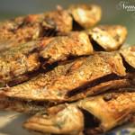 kalori ikan kembung goreng