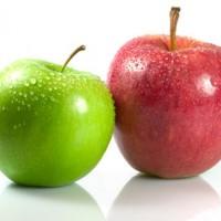 Kalori Epal